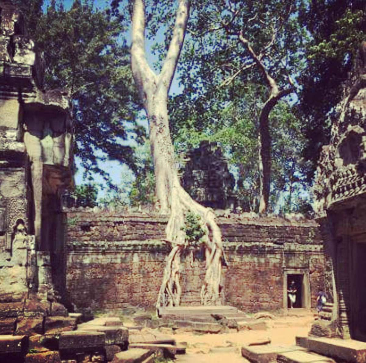 hetic international stage cambodge ruine thaddé 2016