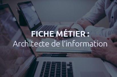 Les métiers du web : comment devenir architecte de l'information ?