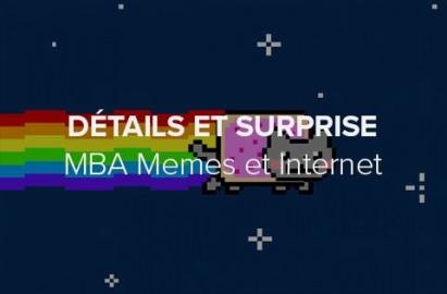 Détails et ambitions du MBA Mèmes et Internet