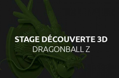 Stage découverte 3D, Dragon Ball Z