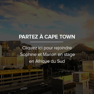 Comment faire son stage en Afrique du Sud, Captown ?